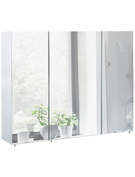 Spiegelschrank »Basic«, Weiß BxH: 100 cm x 71 cm